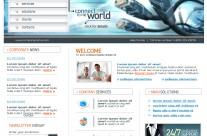Information Technology Website